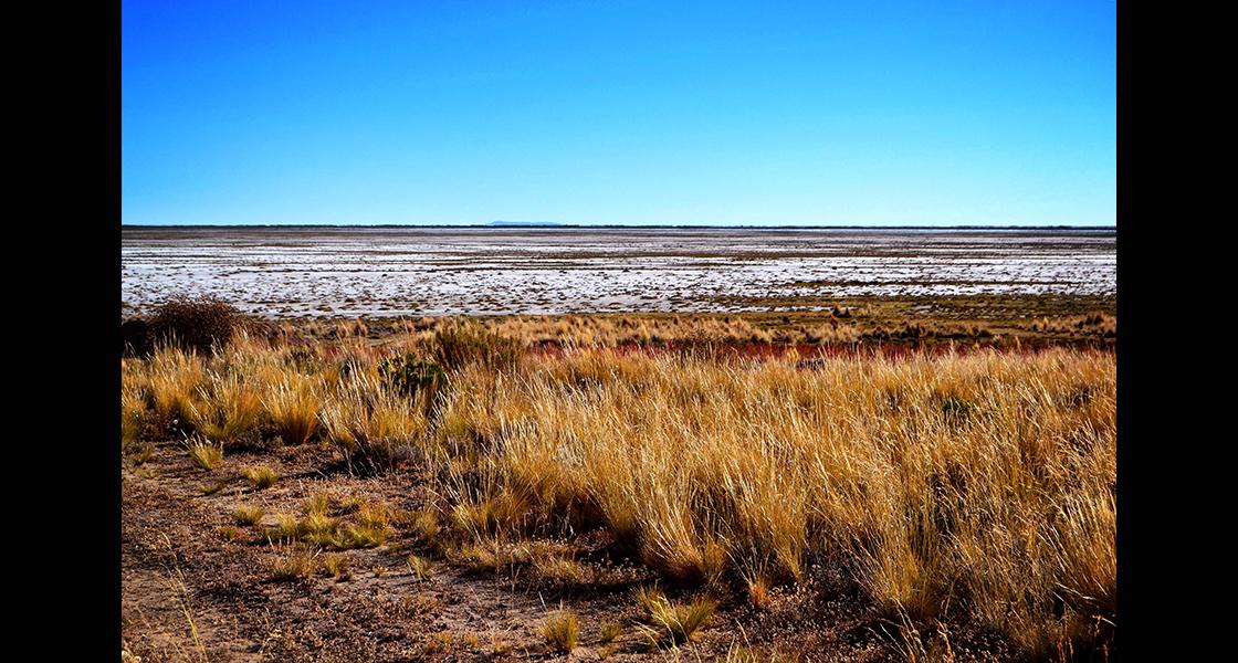 Los abuelos aseguraron que el fenómeno de la sequía se registra cada 15, 20, hasta 50 años, por cuestiones geográficas, aunque en esta ocasión se presume que fue debido a la sedimentación, la contaminación minera, la mala gestión del agua para alimentar los campos e incluso las consecuencias del fenómeno El Niño.